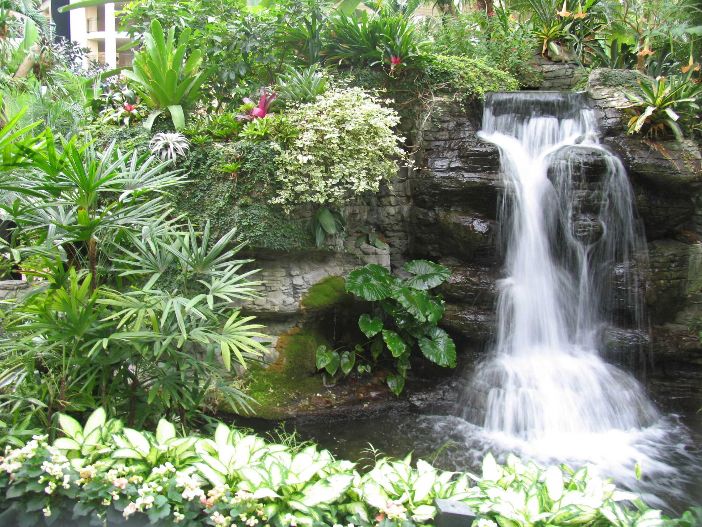 Фото водопадов в саду