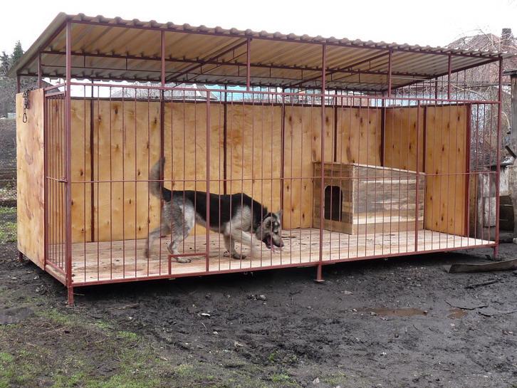Вольер для собаки своими руками с фото